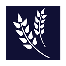 wheaticon.png