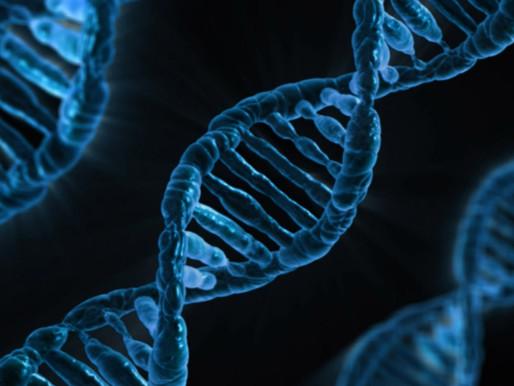 Aranan Yanıt CRISPR Olabilir mi?