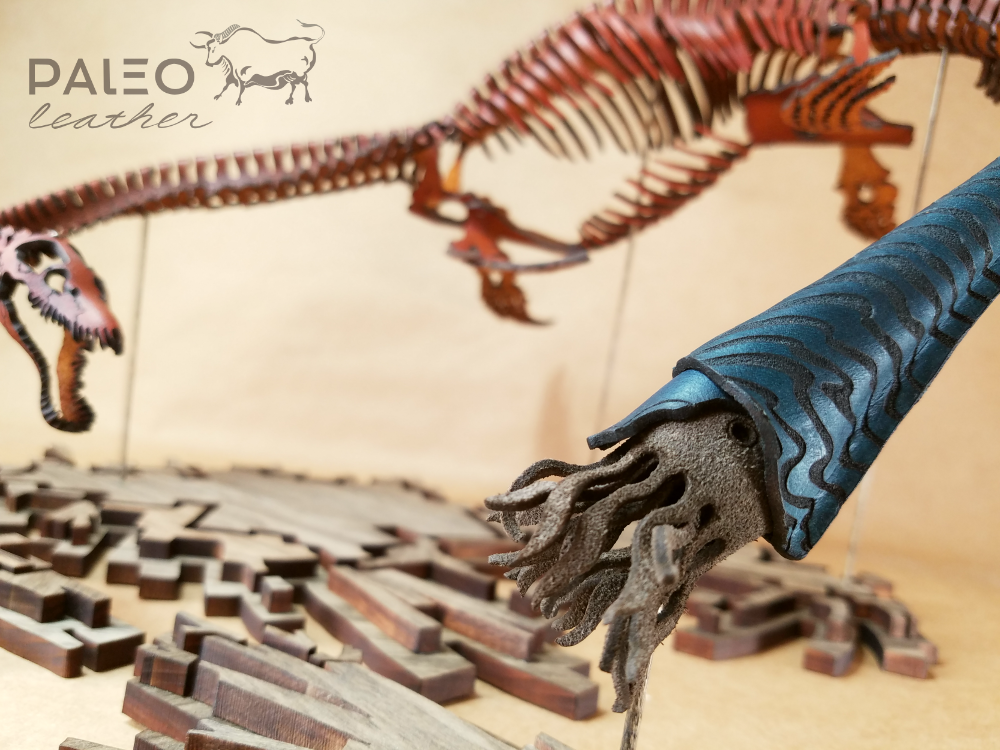 paleo, leather, leathersculptor, leathersculpture, plesiosaur, orthocone, kit, elasmosaurid, orthoceras, elasmosaurids, late, triassic, cretaceous, cambrian, paleoleather, paleoart, paleoartist, elasmosaurus, squid, nessie, art, leatherartist, diy, leatherkit, leatherworking, leatherfossil, extinct, fossil skeleton, prehistoric, art, sculpture, paleoart, skelosaurz, dinosaur, leatherwork, leathertoy, modelkit, dinosaurmodel, stemtoy, stem, naturaltoy, natural, toy, modeling, fossils