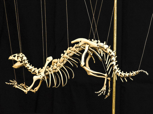 The Psittacosaurus