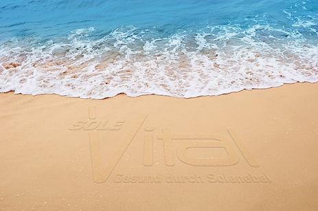 Meersolw_vital-logo.jpg