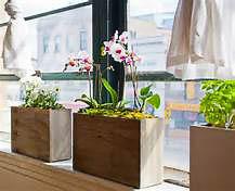 window-sil-garden-boxes