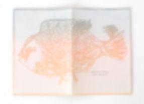 beautifulsunset-book(back1-2)-yukarinaka
