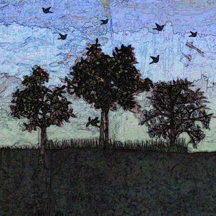 twilight flock