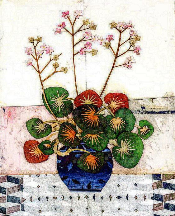 Favorite Begonia