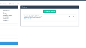 New Feature: Meetings Module