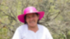 Luz Matilde Rios Zhunio es tejedora de Sombreros de Paja Toquilla (Panama Hats) y socia de MAKI FairTrade. Vive en Principal, Chordeleg, Azuay, Ecuador.