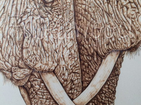 I have just completed this lovely piece called 'Hello Old Friend' the meeting of two elephan