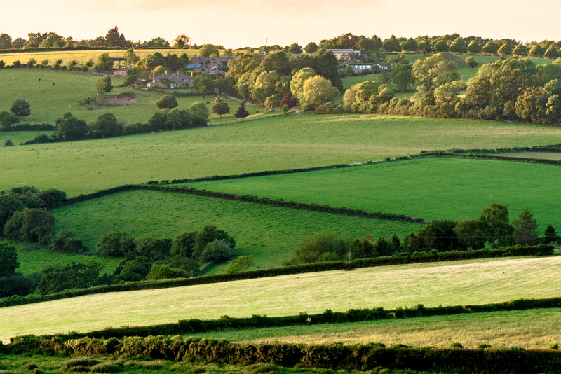 green rolling hills Cotswolds