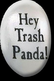 Hey trash panda