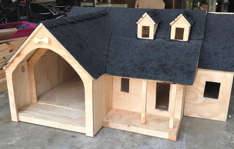 Custom built dog house-meeting