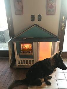 doggie door6.jpg