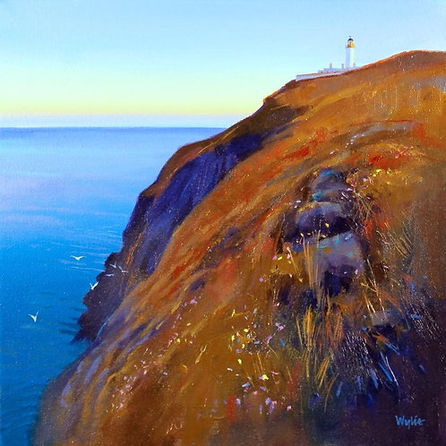 Jim Wylie - Mull of Galloway