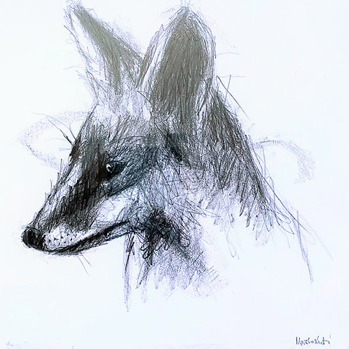 Marsha Luti - Wily Fox