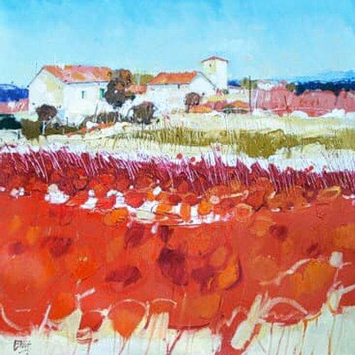 Ian Elliot - Garden Plots, Arno Valley Tuscany