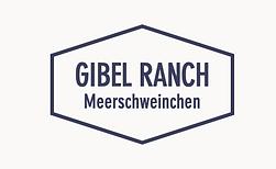 Meerschweinchen von der Gibel Ranch