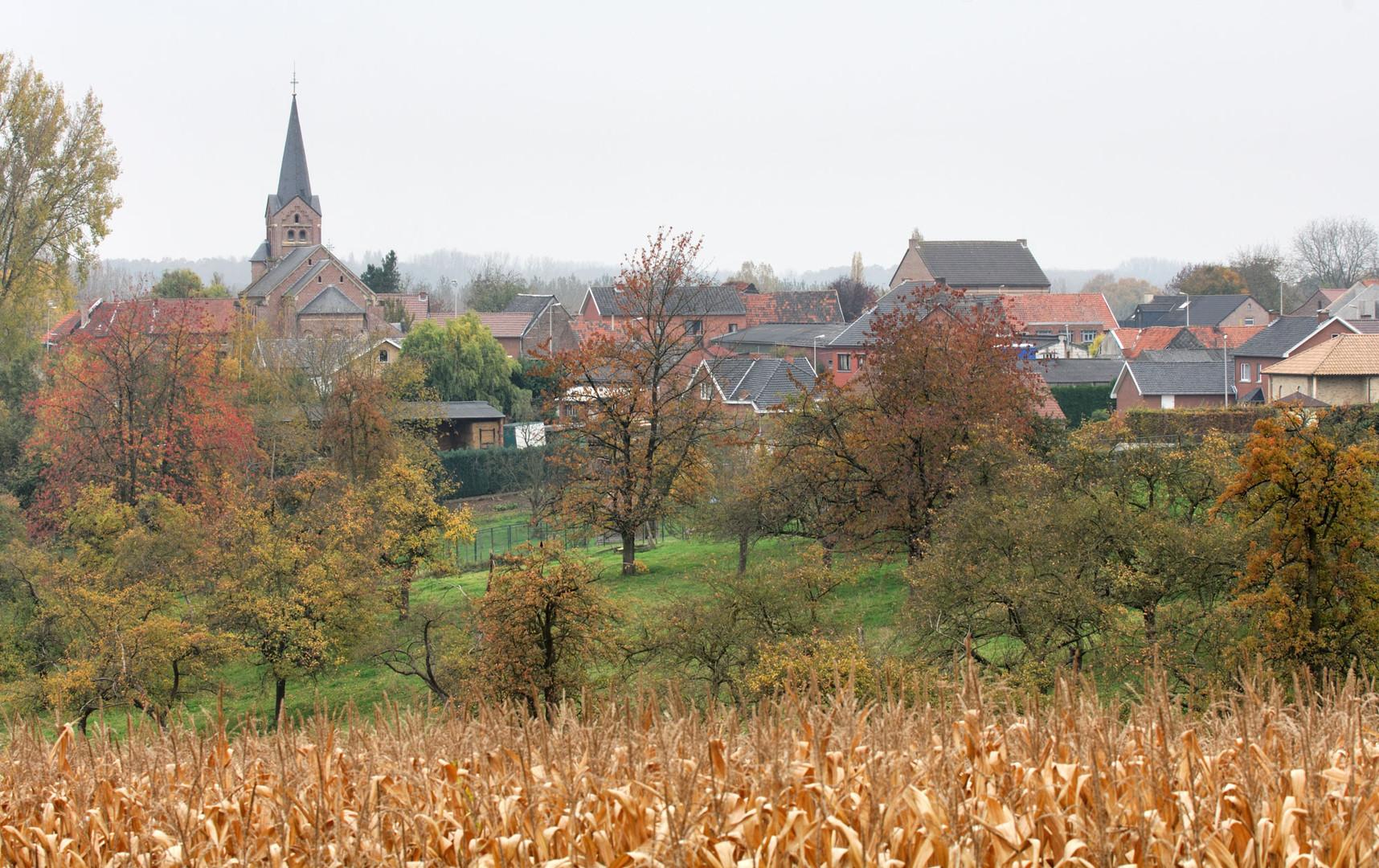 Zammelen dorp