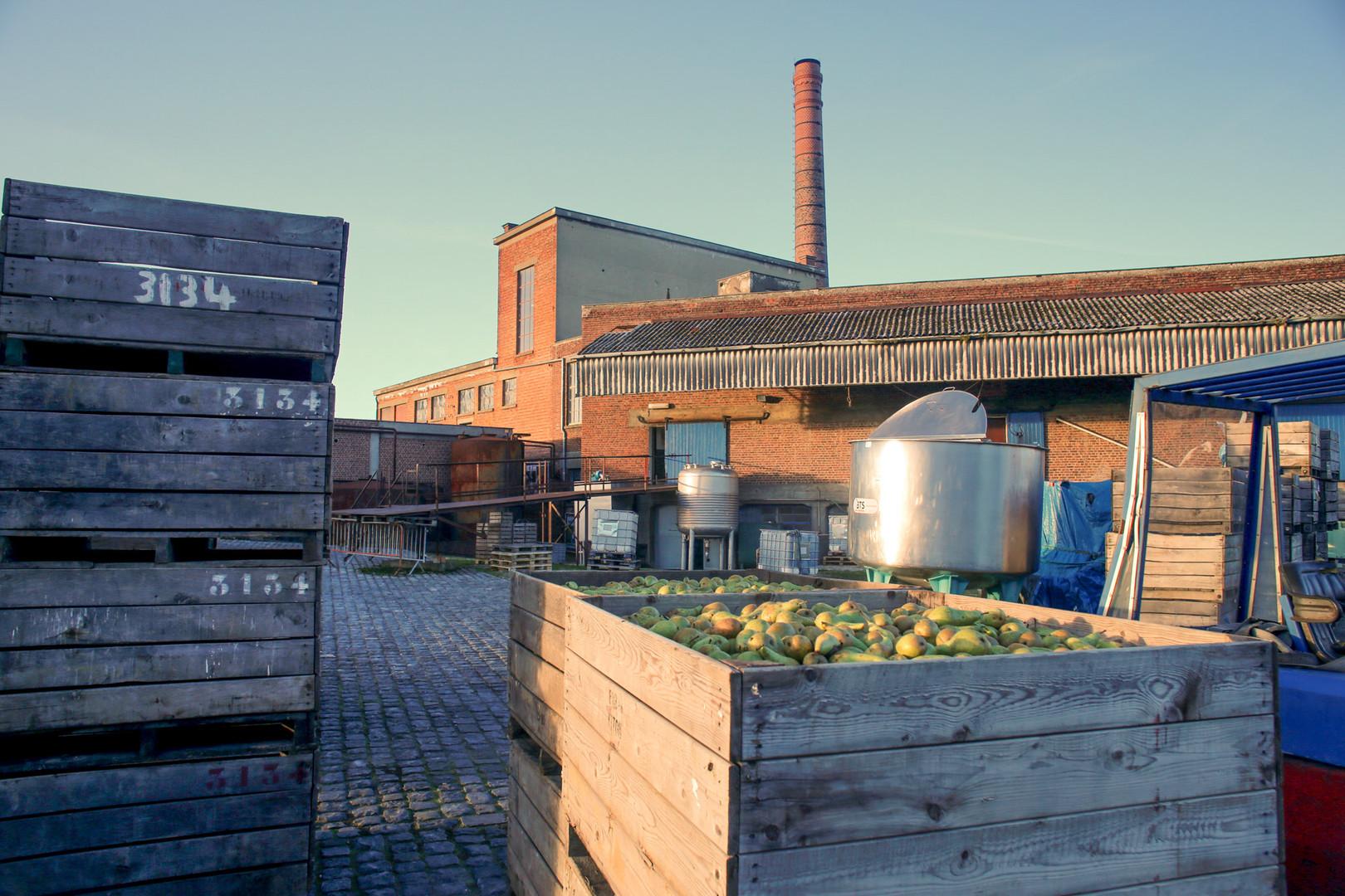Stroopfabriek Borgloon