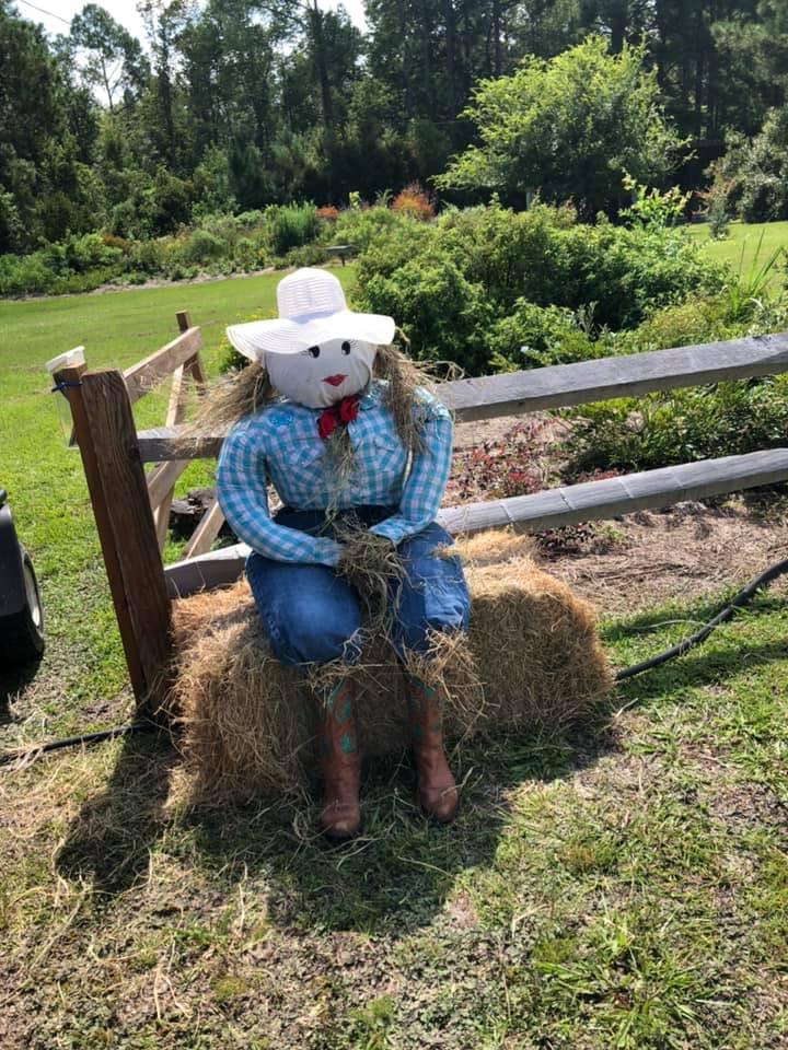 Scarecrow (4).jpg