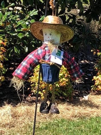 Scarecrow (9).jpg