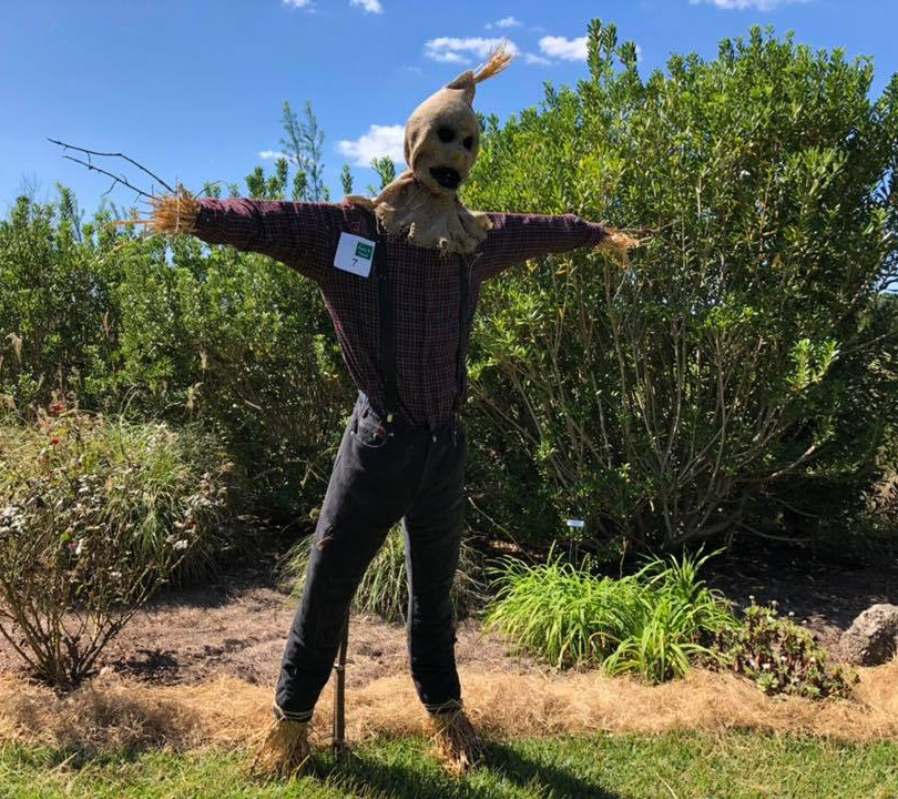 Scarecrow (7).jpg