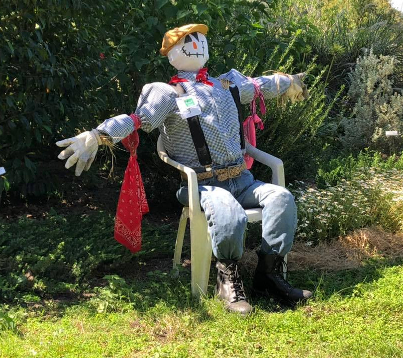 Scarecrow (8).jpg