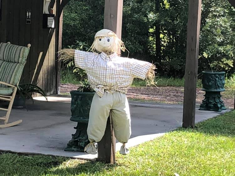 Scarecrow (3).jpg