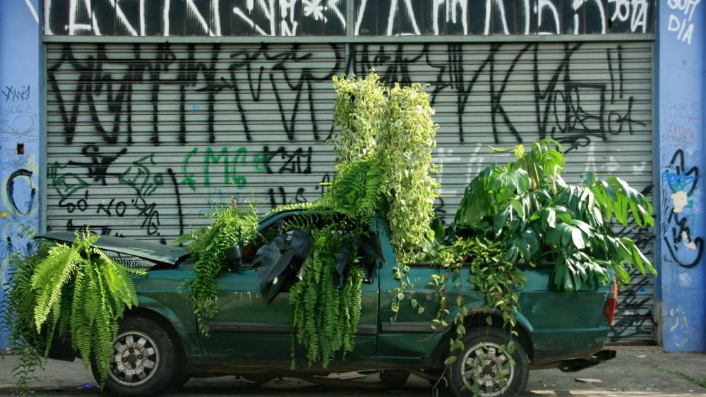 carro_verde_bijari_natureza_urbana_00-1000x563_cópia_2
