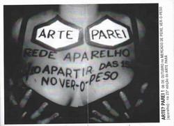 cópia_de_gazebo3