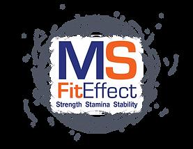 MSFE_Logo web white background original.