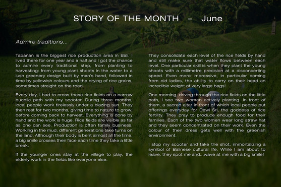 Story June ENG