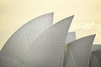 The Shell, Sydney - 2015, Australia