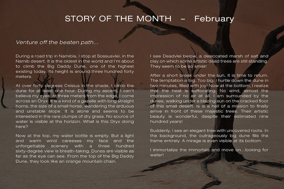 Story February ENG