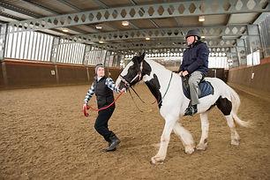 Adult on horse in indoor menage