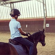 Horse riding in indoor menage