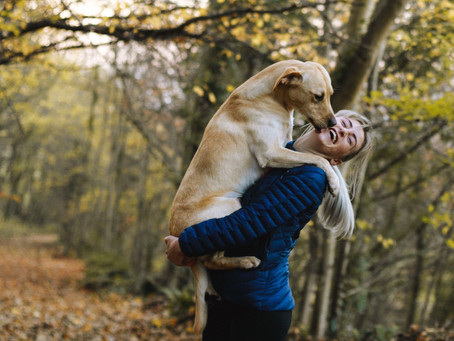 Puppy Love: How Your Dog Shows You They Care