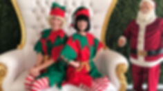 fb elf.jpg