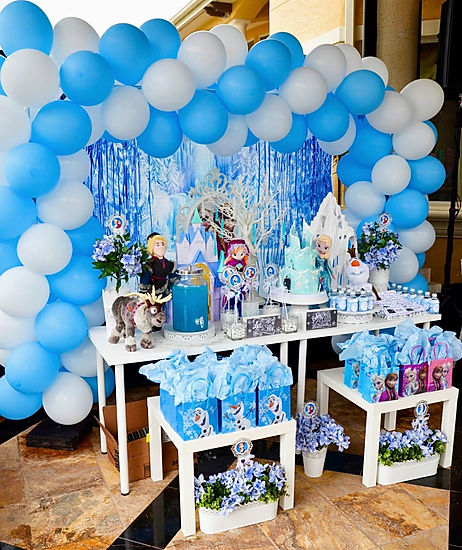 Frozen Birthday Party, Orlando Birthday Party Characters, Frozen Birthday Party Decorations, Orlando Princess Parties, Birthday Party, Princess Party
