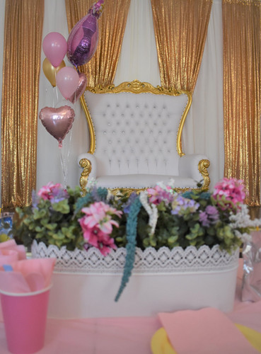 Sleeping Beauty Princess Aurora Birthday Party