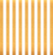 gold-vertical-stripes-on-white-backgroun