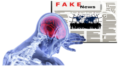 Fake News, False Memories and Flawed Decisions: A Behavioural Solution
