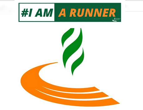 Athletics Ireland logo 2 (2).png