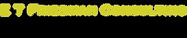 e-t-friedman-logo.png