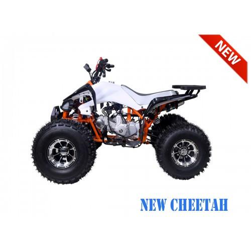 NewCHEETAH OrangeLS1200.900-500x500.jpg