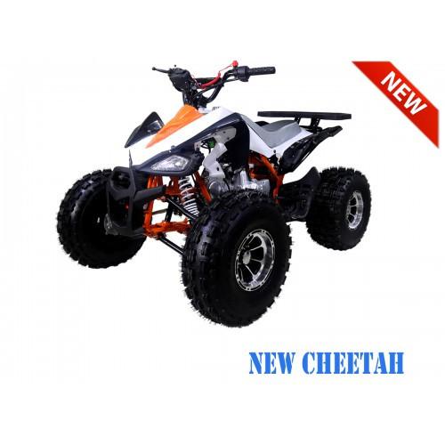 NewCHEETAH OrangeLFS1200.900-500x500.jpg