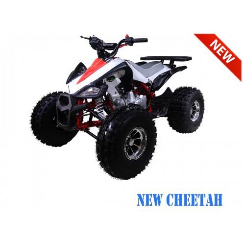 NewCHEETAH RedLFS1200.900-500x500.jpg