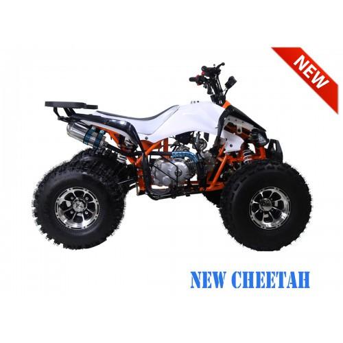 NewCHEETAH OrangeRS1200.900-500x500.jpg