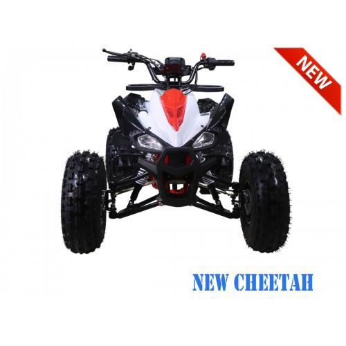 NewCHEETAH RedFRNT1200.900-500x500.jpg