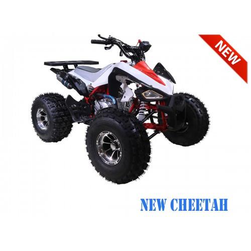 NewCHEETAH RedRFS1200.900-500x500.jpg