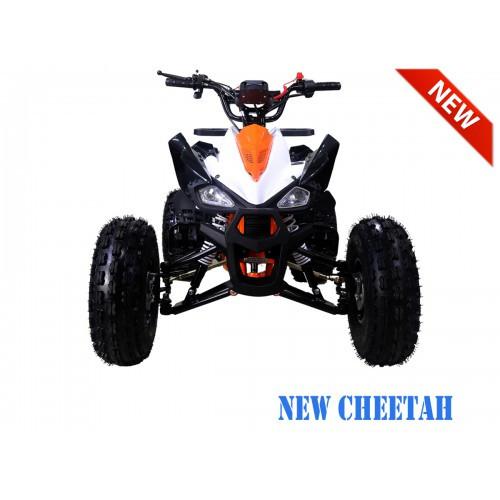 NewCHEETAH OrangeFRNT1200.900-500x500.jp